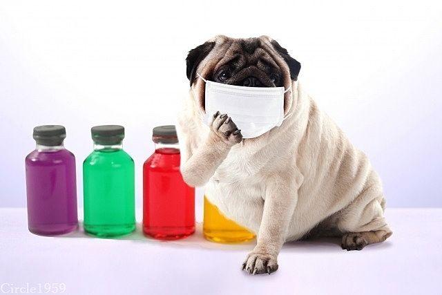 コロナ感染者数が増えているのか、それとも検査数が増えたために報告される感染者数が増えているのか...一体どっちなの?!